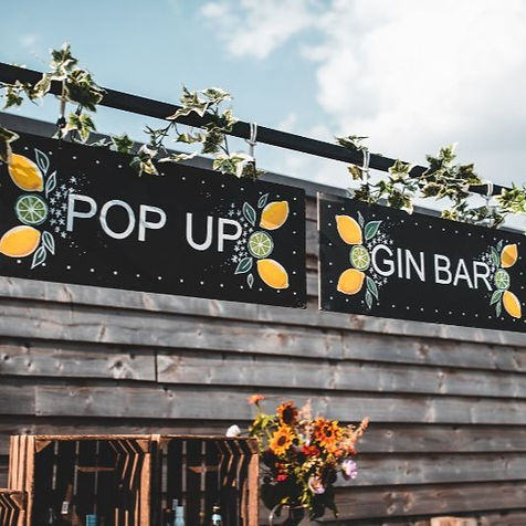 Mobile Gin Bar.jpg