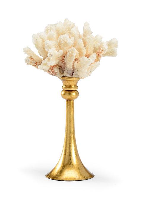 Medium Coral - Gold