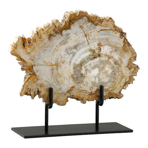 CD - Medium Petrified Wood On Stand