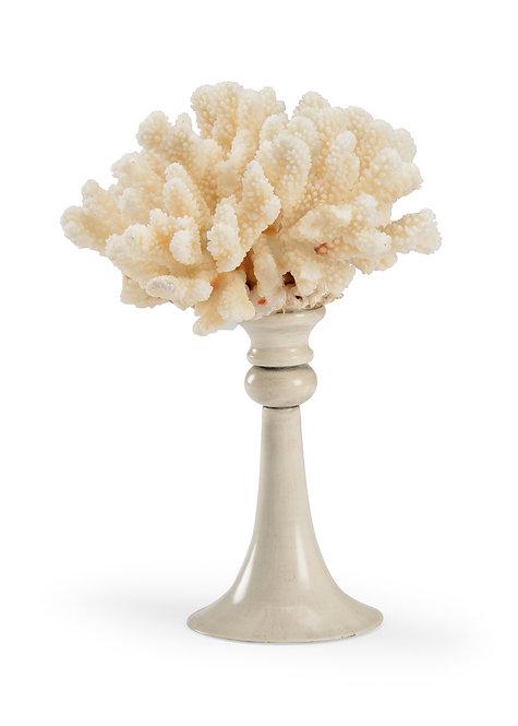 Small Coral - White