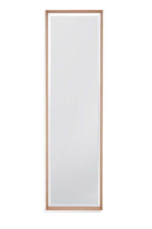 BMIS - Bridges Leaner Mirror