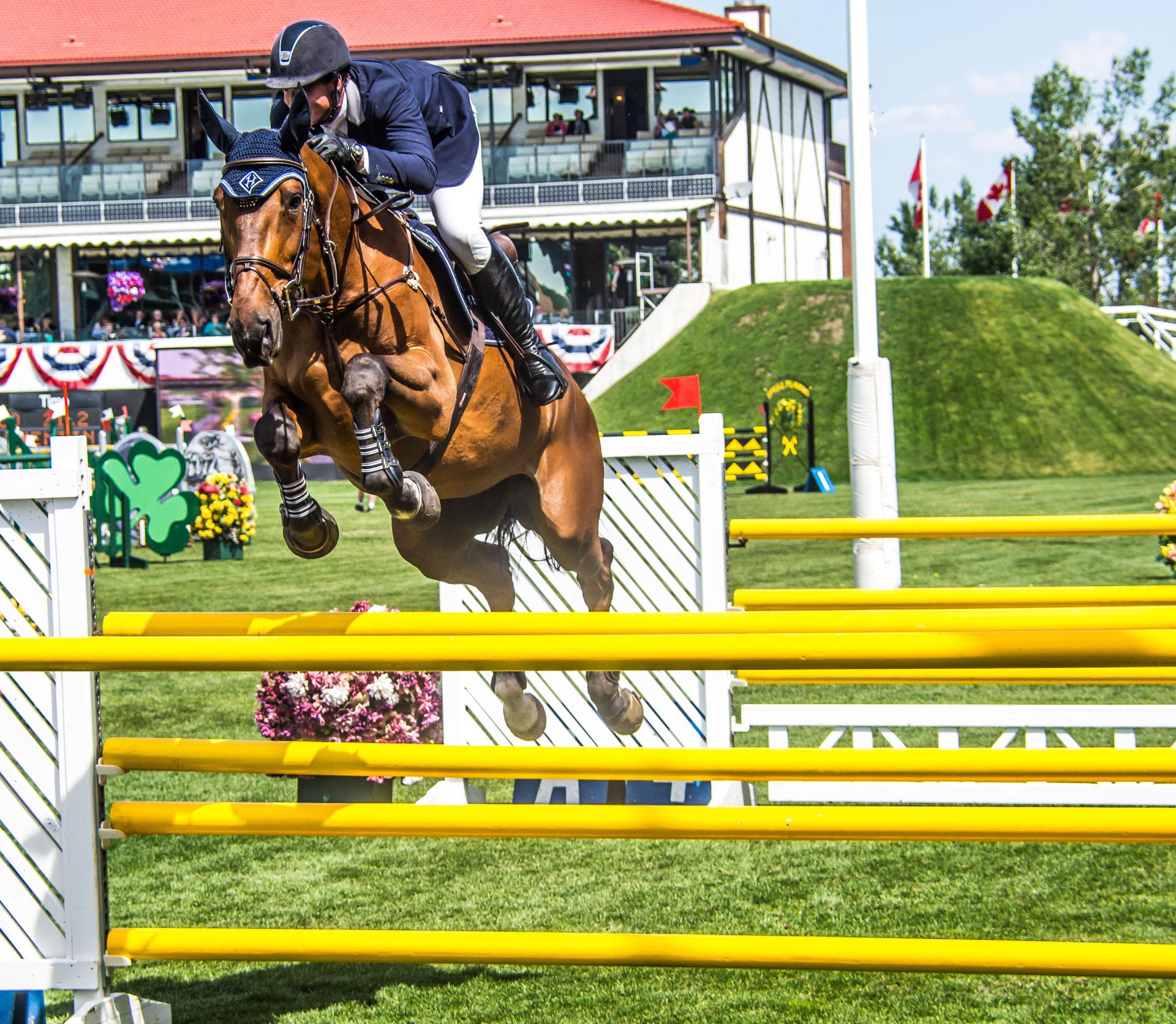 Calgary Sports Photographer, Horse Jumping Spruce Meadows