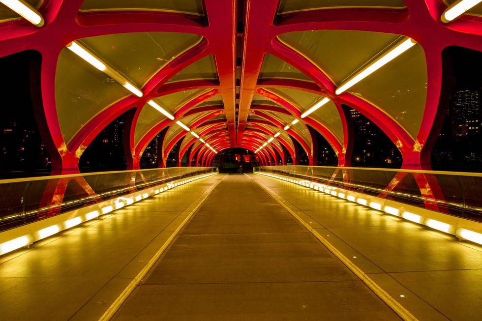 Peace bridge. Inside.