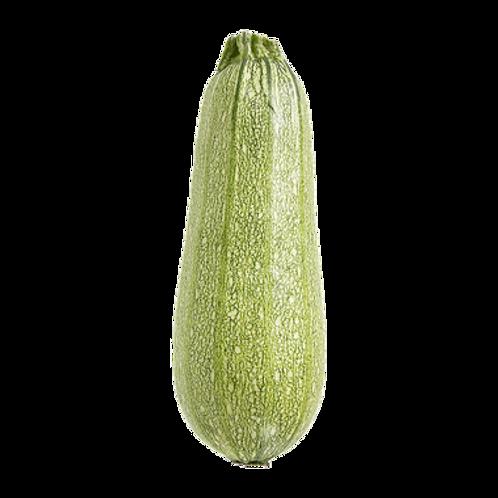 Grey Zucchini (5 Pack)
