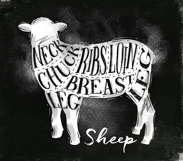 Sheep Cuts.jpg