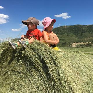 kids on hay.JPG