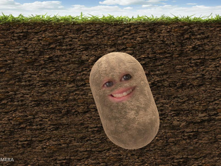 I've turned into a potato