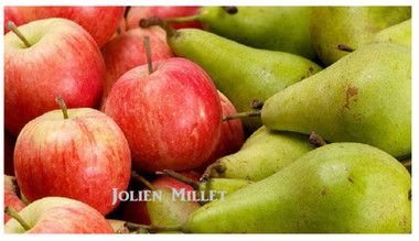 Jolien Millet_edited.jpg