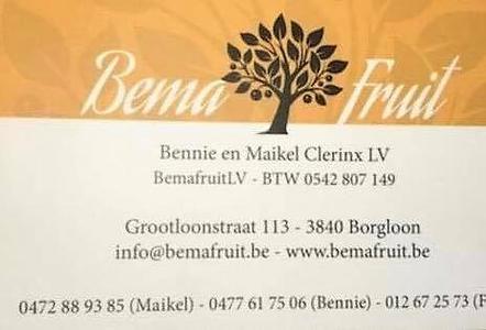 Bema Fruit.png