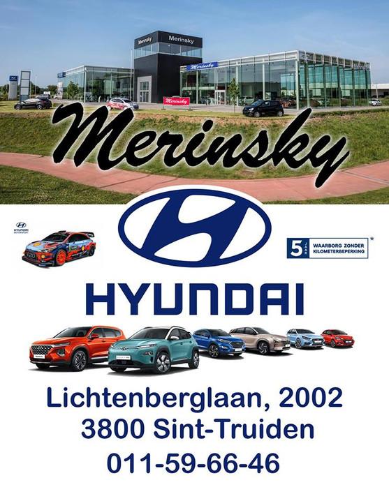 logo merinsky hyundai.jpg