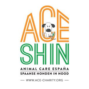 Ace Shin