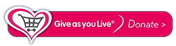 button-rect-donate-pink.png