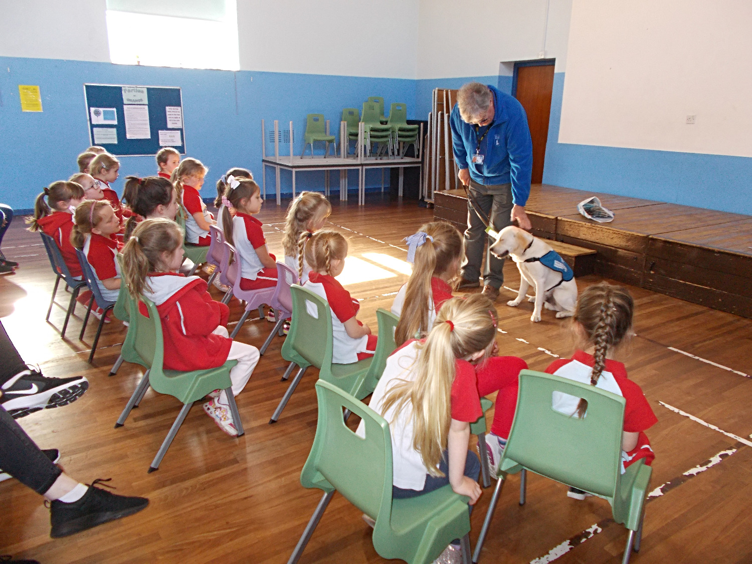 Gerry the Guide Dog