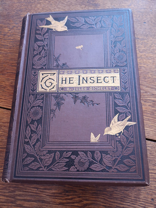 The Insect by Jules Michelet