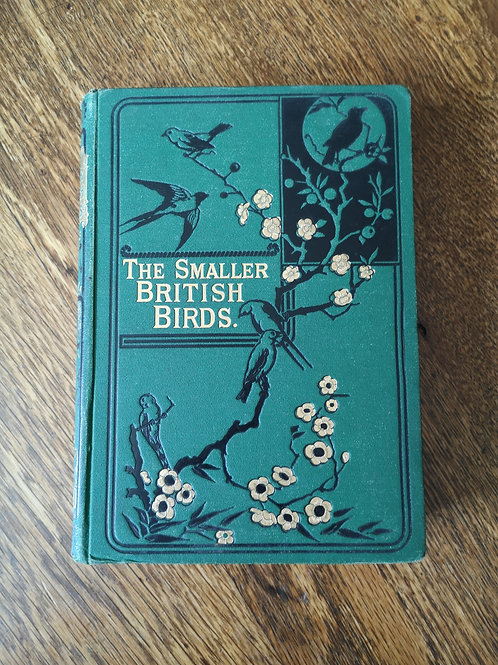 Smaller British Birds by H.G. and H.B. Adams