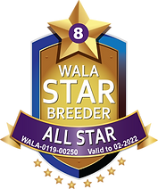 Wildflower All Star Logo 2021.png
