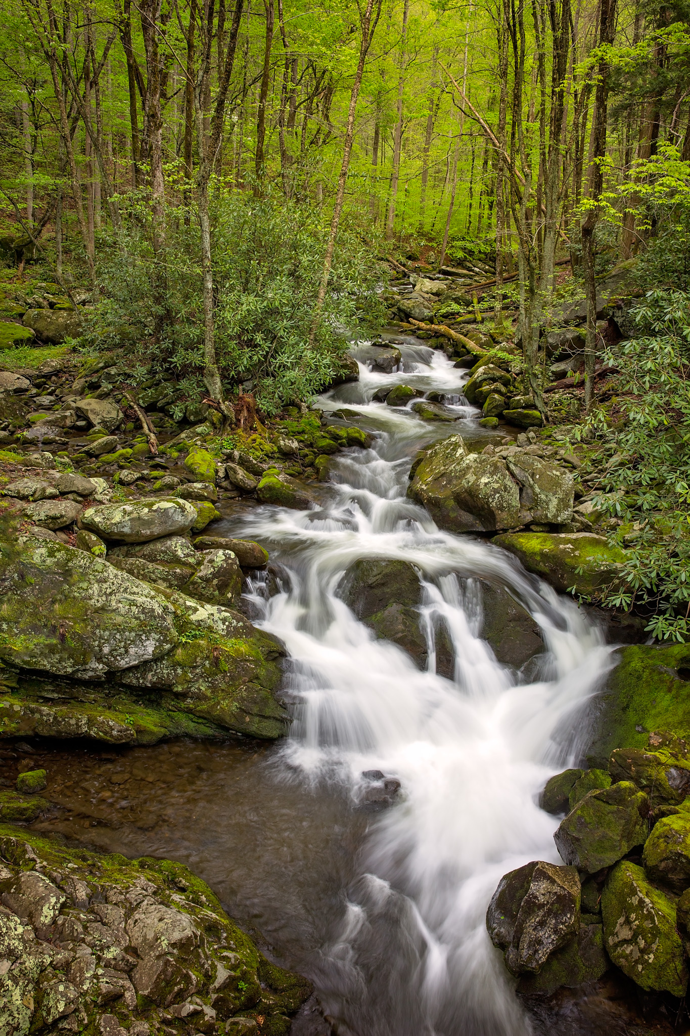 Tremont Waterfall