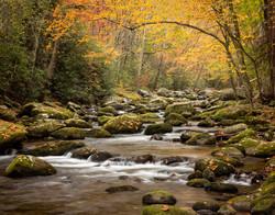 Smoky Mountain Autumn