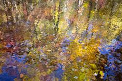 Smoky Mountain Monet