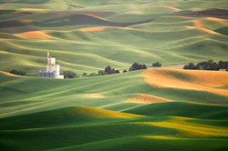 The Palouse from Steptoe Butte