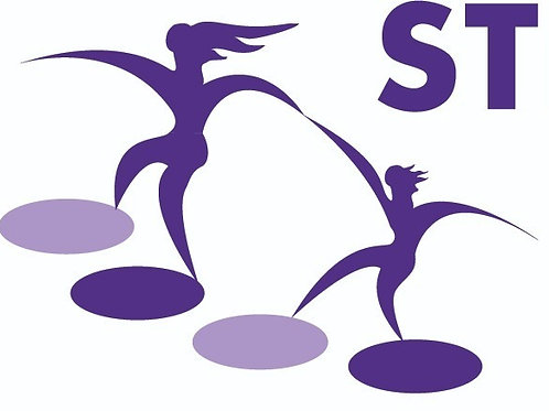 Stepping Stones Donation - $100.00