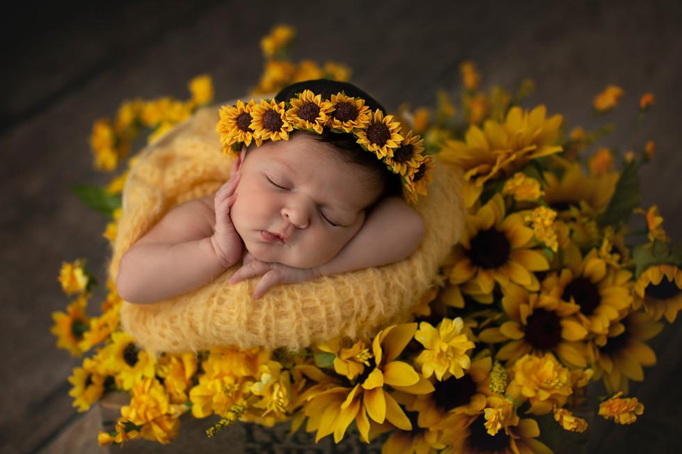 Dallas-newborn-photographer.jpg