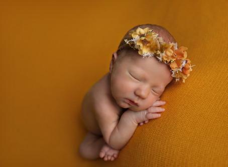 Imogen {Newborn Portrait Session}