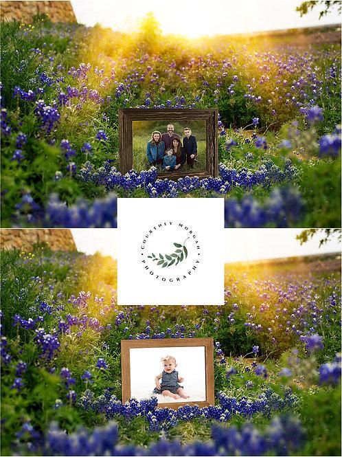 Bluebonnet Frames