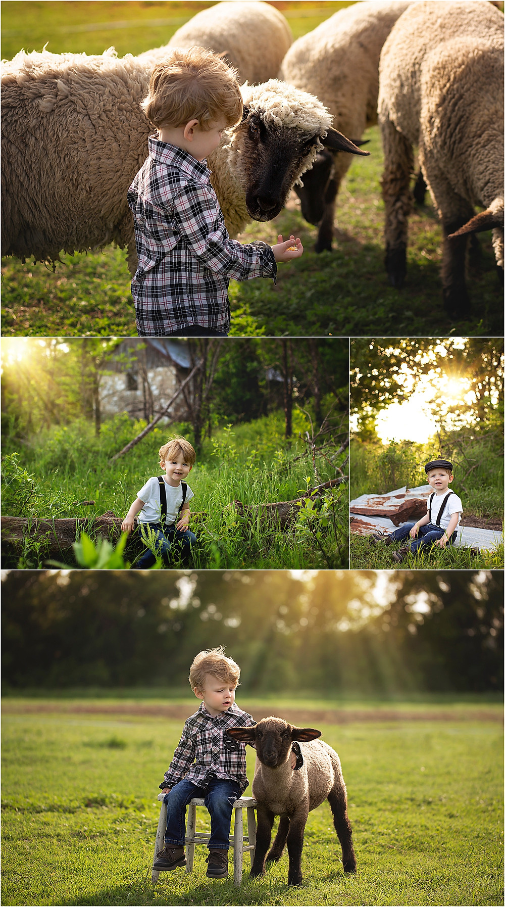 Dallas Child Photographer