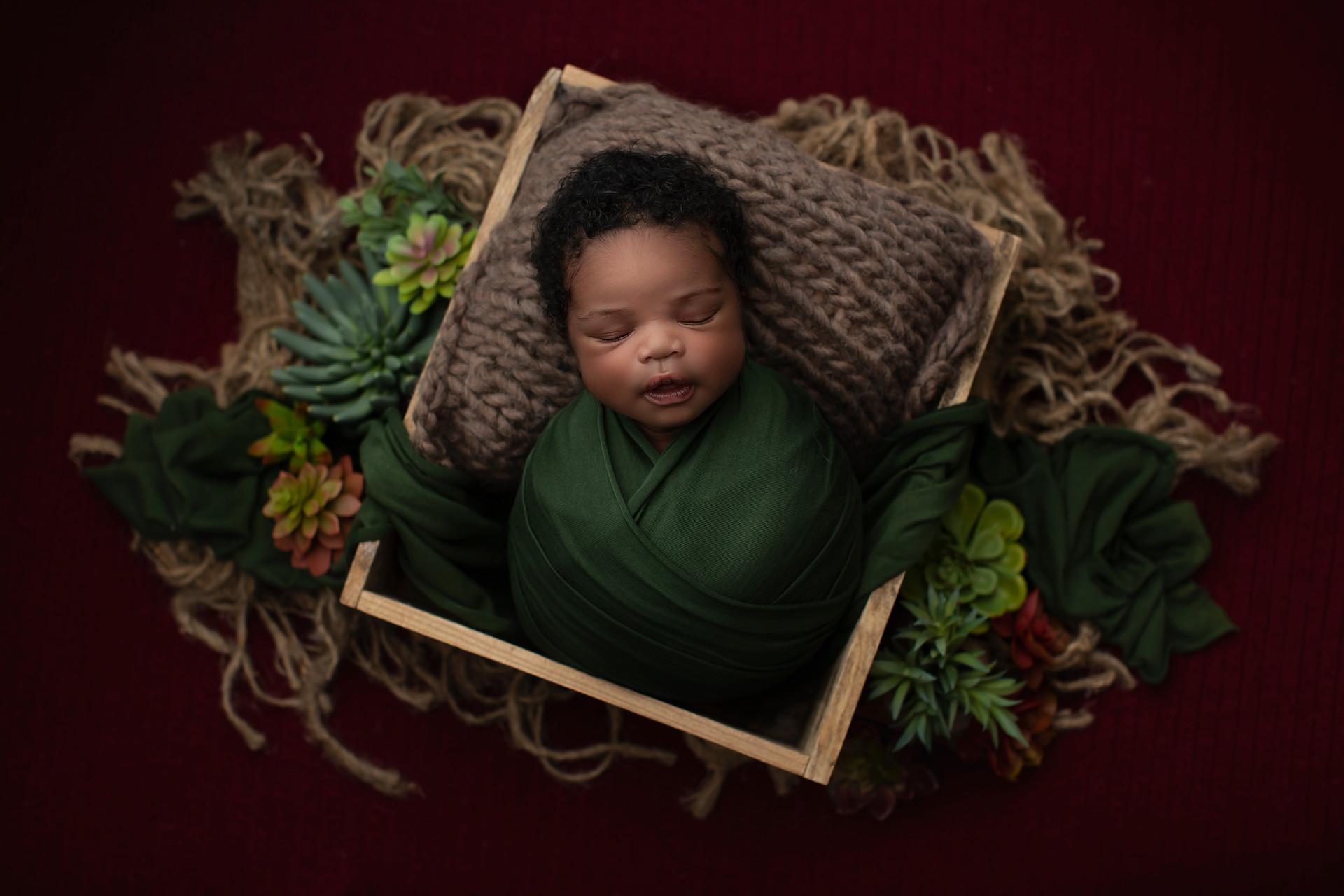 Frisco newborn Photographer