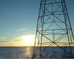 Grant Muck Field Winter