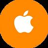 iPhone, iPad, iOS fast App development