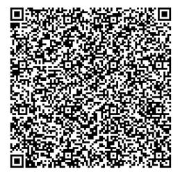 QR Barcodes in short