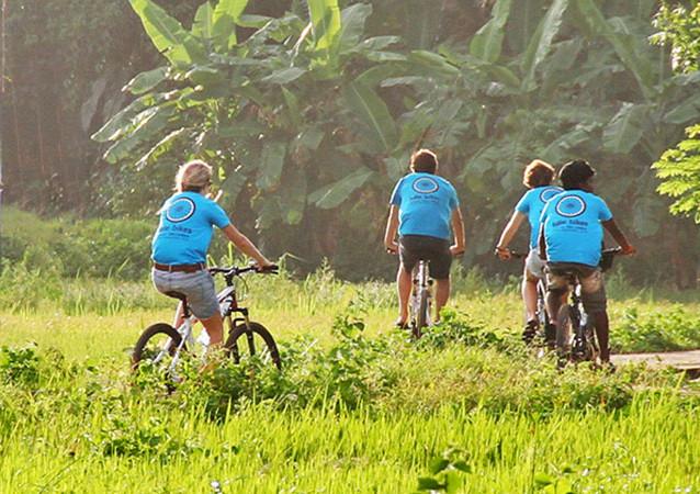 Village Cycling through Paddy Fields