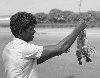 local-man-lobser-srilanka-infinittravel.