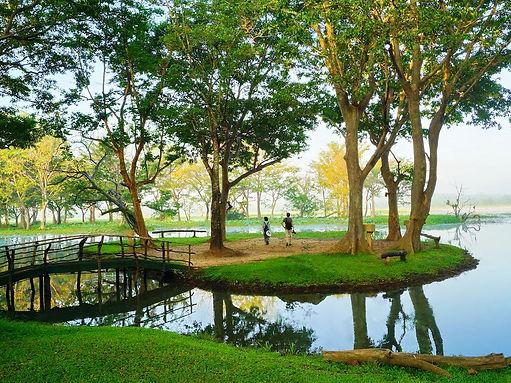 98-acres-resort.jpg