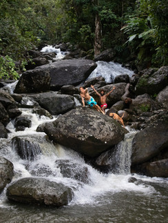 A Nature Adventure in the rainforest