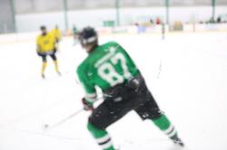 Brother's hockey