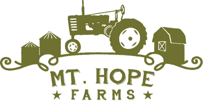 Mt._Hope_Logo_5_31_wo_tag_400x.png