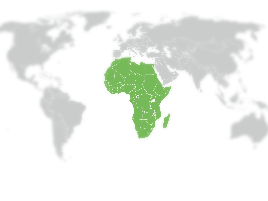 African International Legal Desk