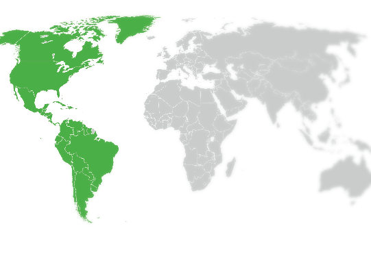 Americas International Legal Team