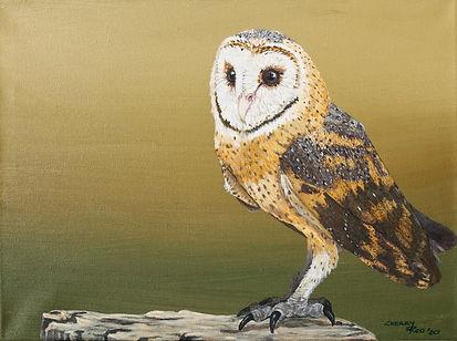 Barn Owl on Green.JPG