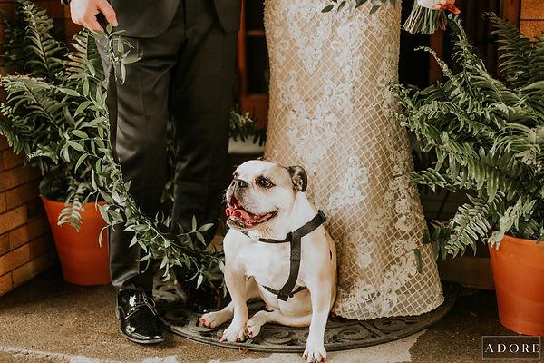 Adore Wedding Photography-27171.jpg