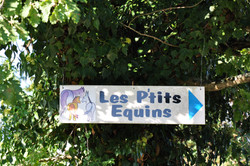 Les P'tits Equins