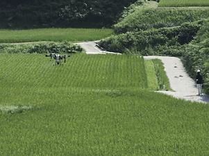 Pesticide-spraying.png