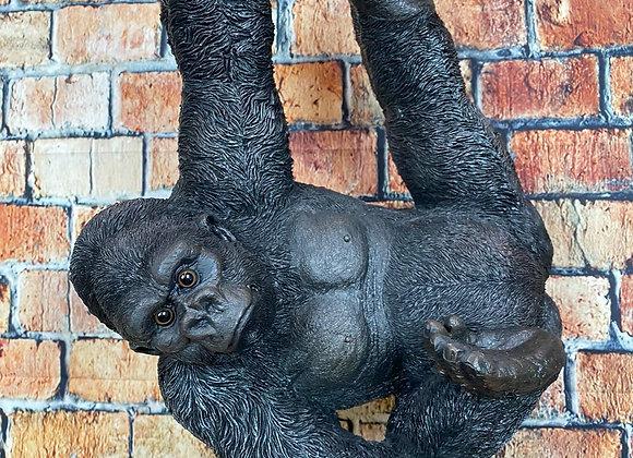 Climbing Swinging Gorilla on Rope