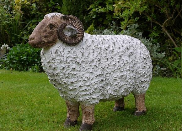Ram Male Sheep Decorative Lawn Statue / Ornament