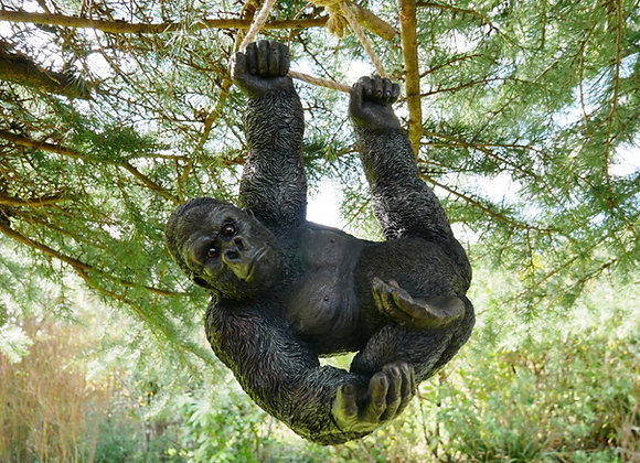 Climbing Swinging Gorilla on Rope - Postage Available
