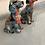 Thumbnail: Graffiti Dog Ornament Paint Splash Effect Home Decoration