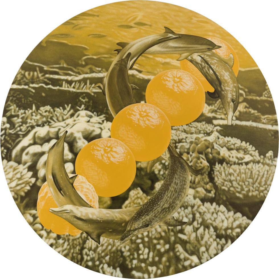 鯨鯨鯨鯨鯨…、五橘 05 / Whale, Whale, Whale, Whale, Whale…(Truly, Truly, Truly, Truly, Truly…), Five Oranges  (Rich) 05